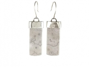 Crazy Lace Agate (natural) Earrings